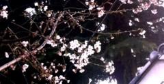 Pearl 公式ブログ/さくら。 画像1