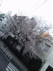 上村龍之介 公式ブログ/春 画像2