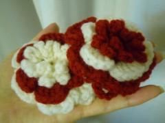 佐弓 公式ブログ/かわいいお花 画像1