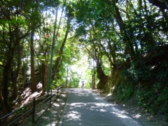 佐弓 公式ブログ/山登り 画像3