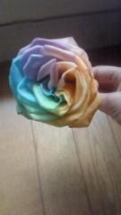 今村美乃 公式ブログ/虹の薔薇 画像1