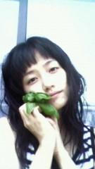 今村美乃 公式ブログ/わたしの庭 画像1