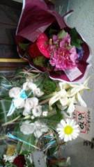 今村美乃 公式ブログ/何百万の星のどれかに咲いている花 画像1