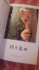 し〜ちゃん 公式ブログ/[1]ふむふむ‥〜♪ 画像1