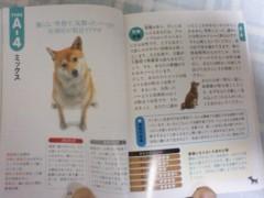 こち亀子 公式ブログ/犬占い 画像1