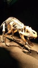 なおみ(チックタックブーン) 公式ブログ/恐竜展 画像1