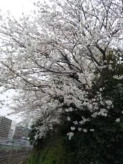 なおみ(チックタックブーン) 公式ブログ/どんよりだけど 画像1