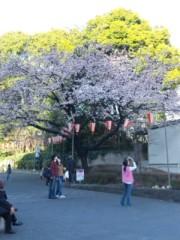 なおみ(チックタックブーン) 公式ブログ/上野は 画像1