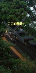 金原亭世之介 公式ブログ/須佐神社 画像3