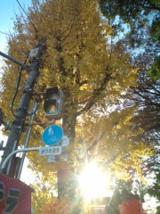 金原亭世之介 公式ブログ/東京の紅葉 画像2