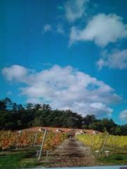 金原亭世之介 公式ブログ/安曇野ワイナリーの風景 画像1