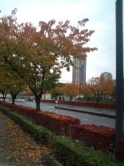 金原亭世之介 公式ブログ/東京の紅葉 画像3