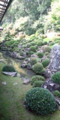 金原亭世之介 公式ブログ/十湖俳句会吟行龍潭寺 画像3