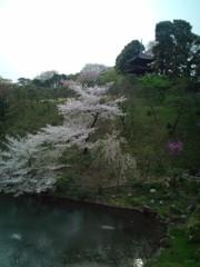 金原亭世之介 公式ブログ/椿山荘カメリア 画像1