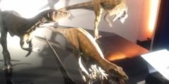 今橋由紀 公式ブログ/恐竜展 画像1