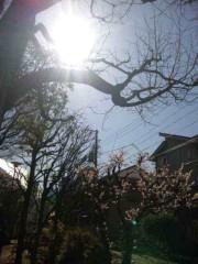 河西里音 公式ブログ/大好きな日本ッ★ 画像2