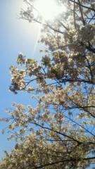 兼子舞(クキプロ) 公式ブログ/春やなぁ 画像1