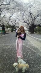 兼子舞(クキプロ) 公式ブログ/SAKURA 画像1