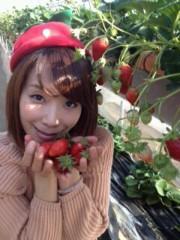 青山利恵 公式ブログ/☆楽しいいちごがりその1☆ 画像1