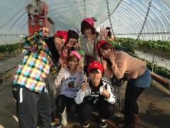 青山利恵 公式ブログ/☆楽しいいちごがりその2☆ 画像3