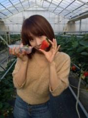 青山利恵 公式ブログ/いちごがり@ファームドウ中里農場 画像2