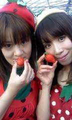 青山利恵 公式ブログ/いちごの日 画像3