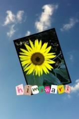 岡本唯 公式ブログ/★ひまわり 画像1