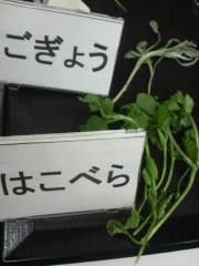 しのへけい子 公式ブログ/春の七草、言えますか? 画像2