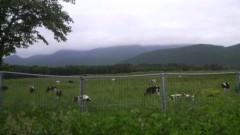 しのへけい子 公式ブログ/のどかな田舎です♪ 画像3