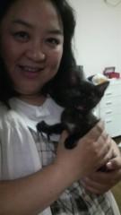 しのへけい子 公式ブログ/甥っ子と姪っ子と子猫 画像3