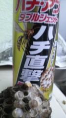 しのへけい子 公式ブログ/アシナガ蜂を駆除しました♪ 画像2