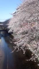 矢沢心 公式ブログ/ころころ 画像1