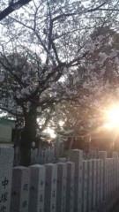 後藤有希代 公式ブログ/*〜桜〜* 画像1