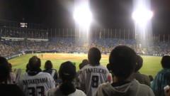 南部虎弾 公式ブログ/神宮球場で〜『ヤクルトVS阪神』外野席 で応援〜 画像1