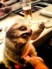 南部虎弾 公式ブログ/友達の飼ってる『スローロリス』!可愛いのなんの 画像1