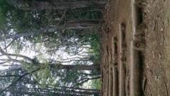 青木治親 公式ブログ/山登り 画像1