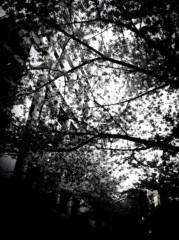 木実 公式ブログ/セレクト! 画像1