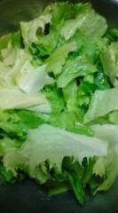菊池隆志 公式ブログ/『サラダ!?o(^-^)o 』 画像3