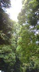 菊池隆志 公式ブログ/『光と緑♪o(^-^)o 』 画像2
