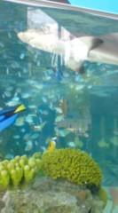 菊池隆志 公式ブログ/『簡易水族館♪o(^-^)o 』 画像2