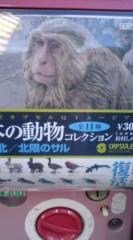 菊池隆志 公式ブログ/『日本の動物♪o(^-^)o 』 画像1