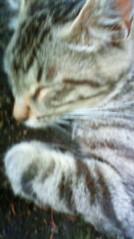 菊池隆志 公式ブログ/『眠いんだもんo(^-^)o 』 画像3