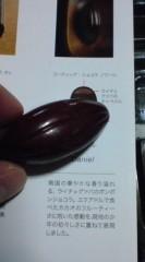 菊池隆志 公式ブログ/『ダニエル♪o(^-^)o 』 画像1