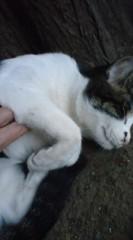 菊池隆志 公式ブログ/『寝るが一番♪o(^-^)o 』 画像2