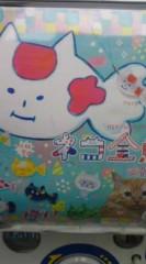 菊池隆志 公式ブログ/『ネコ金魚!?o(^-^)o 』 画像1