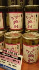 菊池隆志 公式ブログ/『さくらパンダ酒♪o(^-^)o 』 画像2