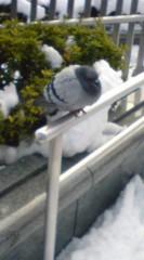 菊池隆志 公式ブログ/『ずんぐりむっくり♪o(^-^)o 』 画像2