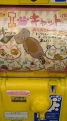 菊池隆志 公式ブログ/『キャットシール♪o(^-^)o 』 画像1