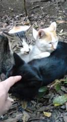 菊池隆志 公式ブログ/『猫枕!?o(^-^)o 』 画像3