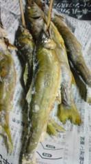 菊池隆志 公式ブログ/『鮎に岩魚♪o(^-^)o 』 画像2